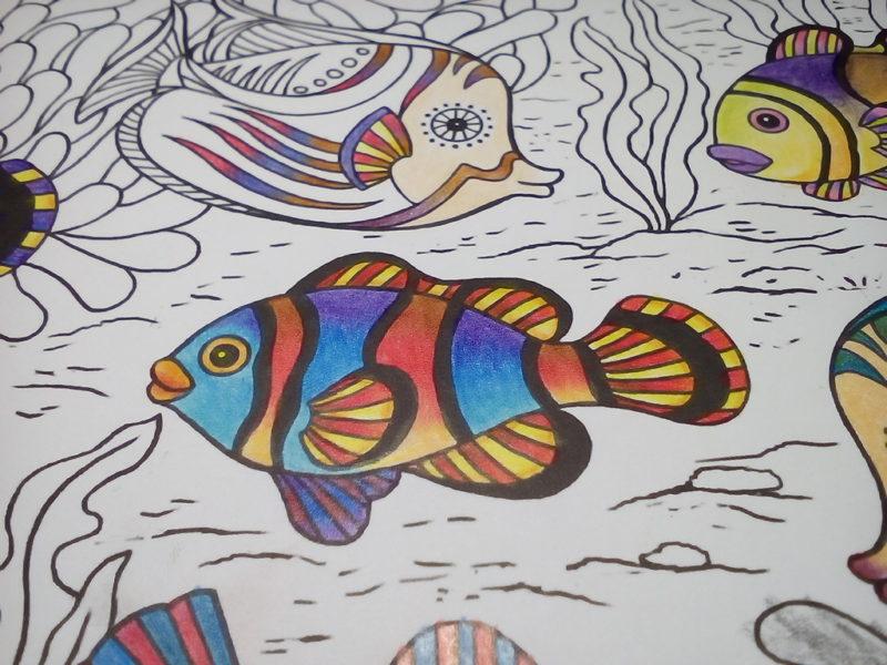 ダイソー 癒しの塗り絵マリンライフ