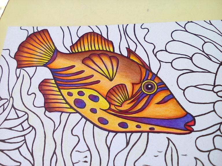 ダイソーの癒しの塗り絵 マリンライフ ちょっと大人のウマズラハギ