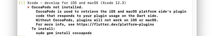 Flutterdoctorの実行画面(XcodeのCocoapodsでエラー)