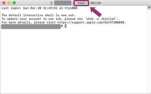 Macのターミナルに表示されたbashの文字