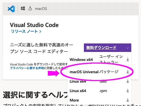 VSCodeダウンロードの種類